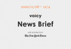 有名ミニマリスト、プロ馬券師、元CA、Tiktokerなどが放送開始!2020年11月 Voicyパーソナリティ審査結果